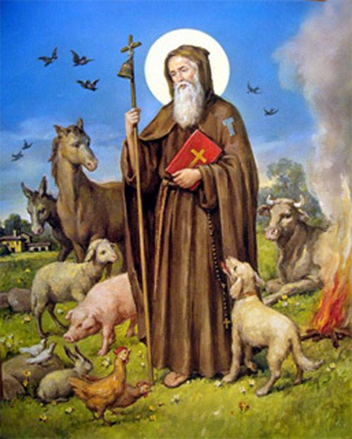 Slikovni rezultat za Sveti Antun, opat